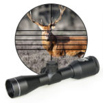 Best Nightforce scopes for Elk Hunting