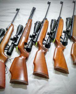 Best Scopes for Pellet Guns