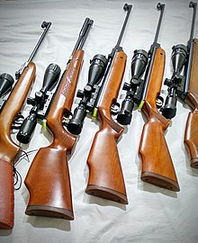 Best Air Rifles for Target Shooting