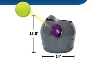PetSafe Automatic Ball Launcher Dog