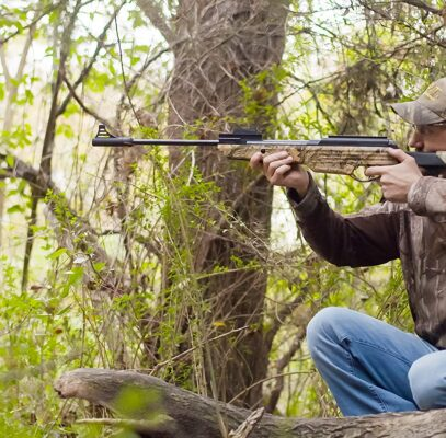 Best Air Rifle for Squirrels