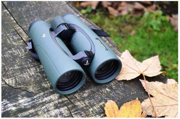 Best Swarovski Binoculars for Birding