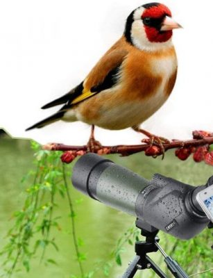 best spotting scope for 500 yards