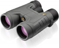 Leupold BX-2 Acadia 10x42mm Binocular, Shadow Gray